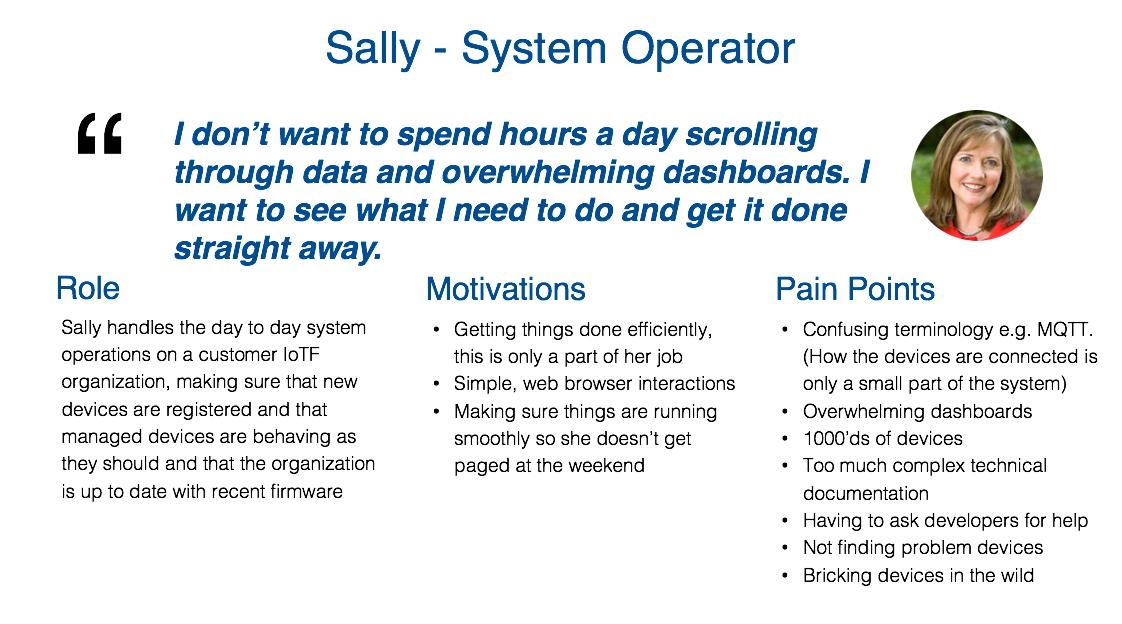 sally -persona