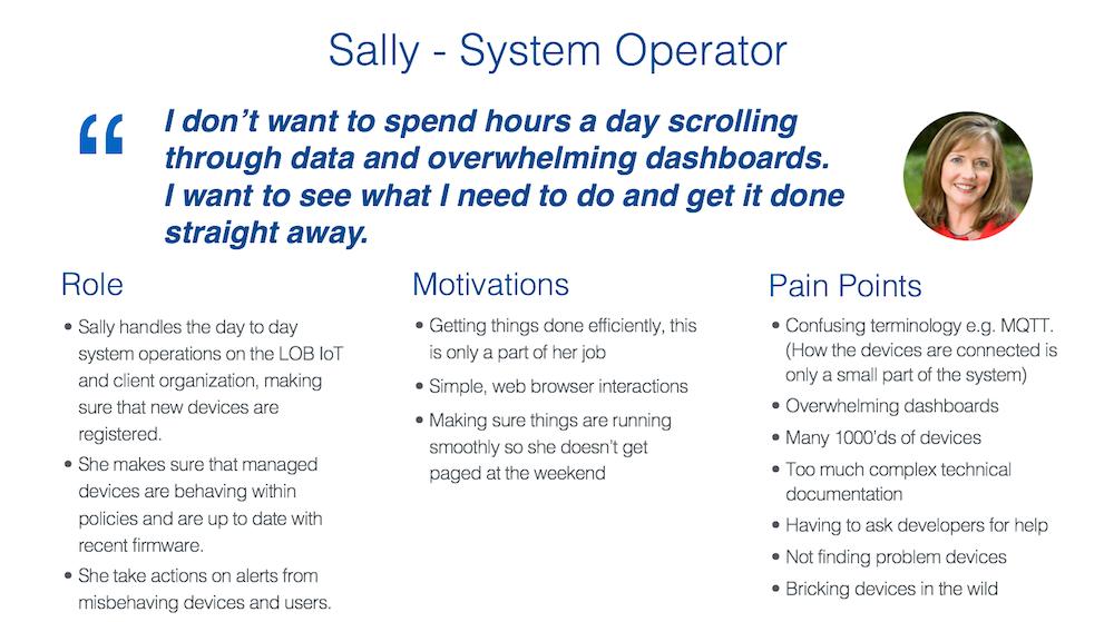 sally-persona